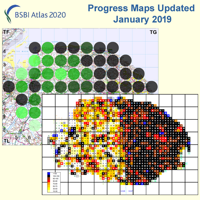 Atlas 2020 progress