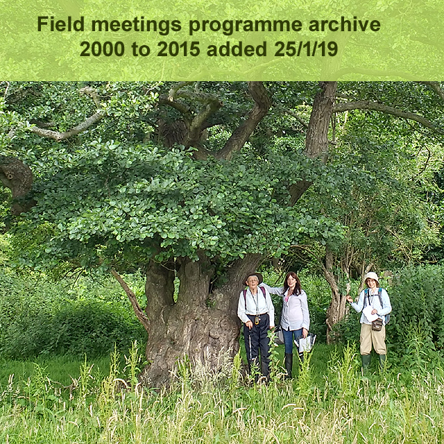 Field meeting archive update