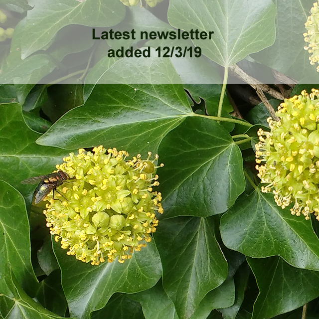 Latest newsletter added
